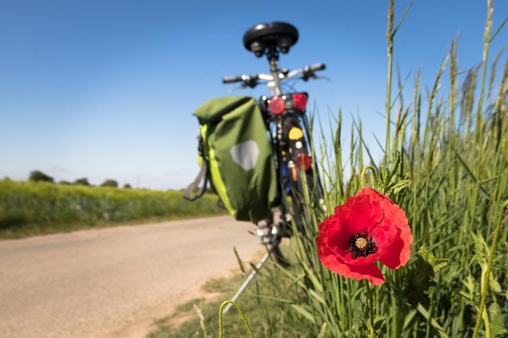 bicicletta pixabay