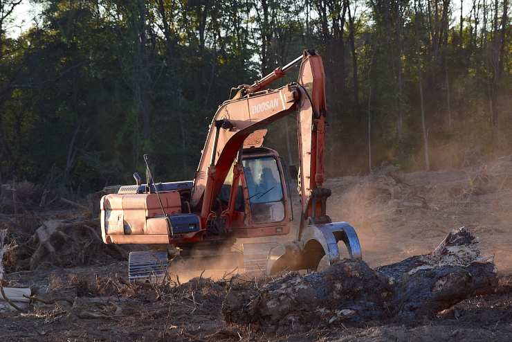 deforestazione uomo terra