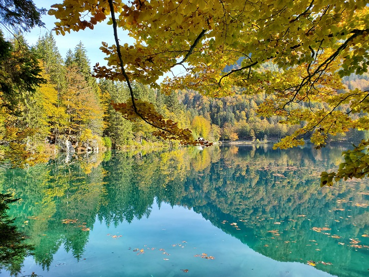 foliage laghi di fusine friuli