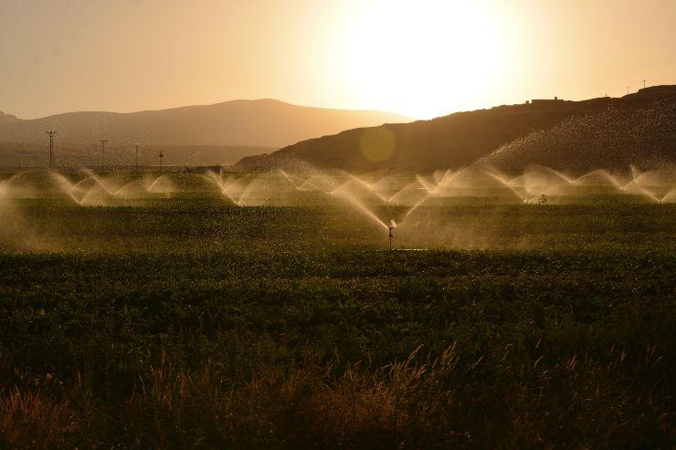 irrigazione campo acqua