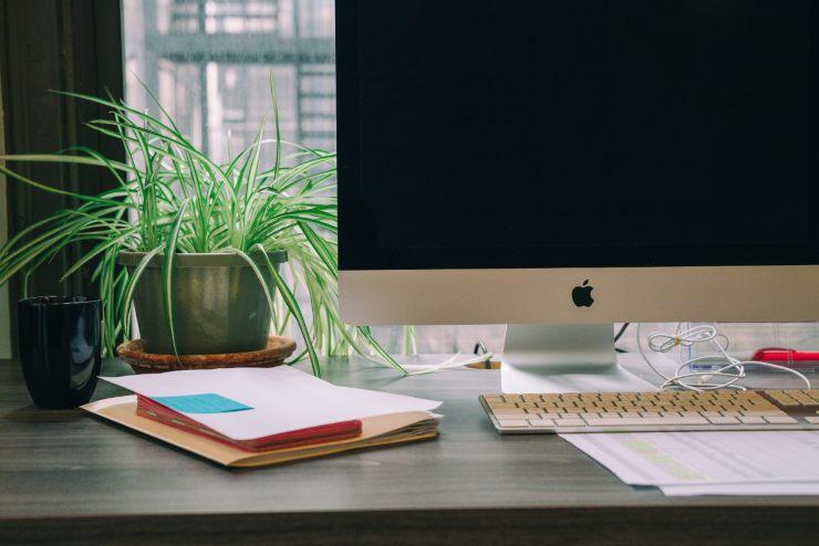 piante in ufficio benefici