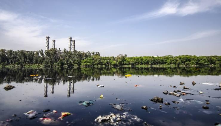 inquinamento lago reati ambientali
