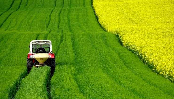 agricoltura campi