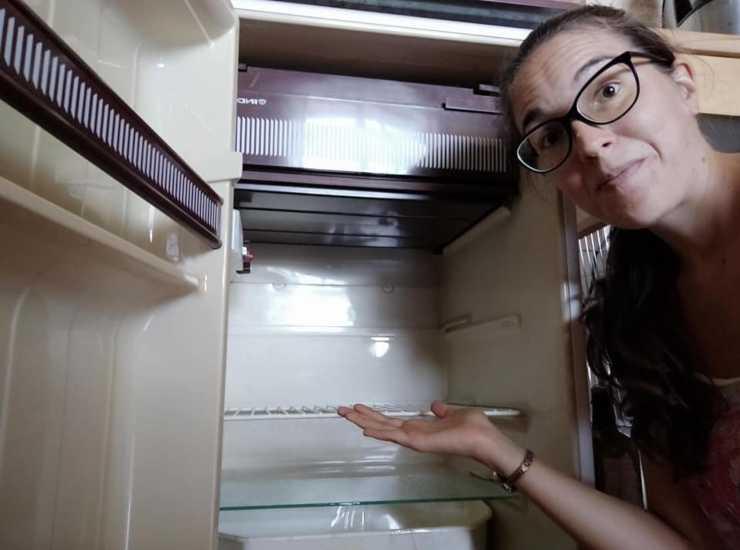 frigorifero staccato il giardino