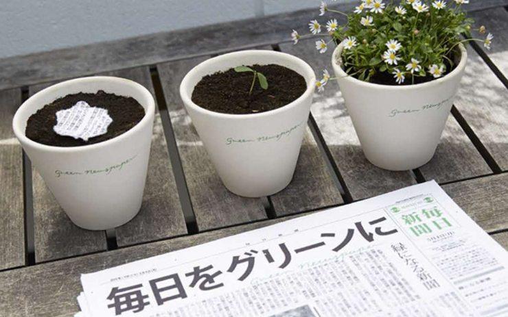 giornale ecologico
