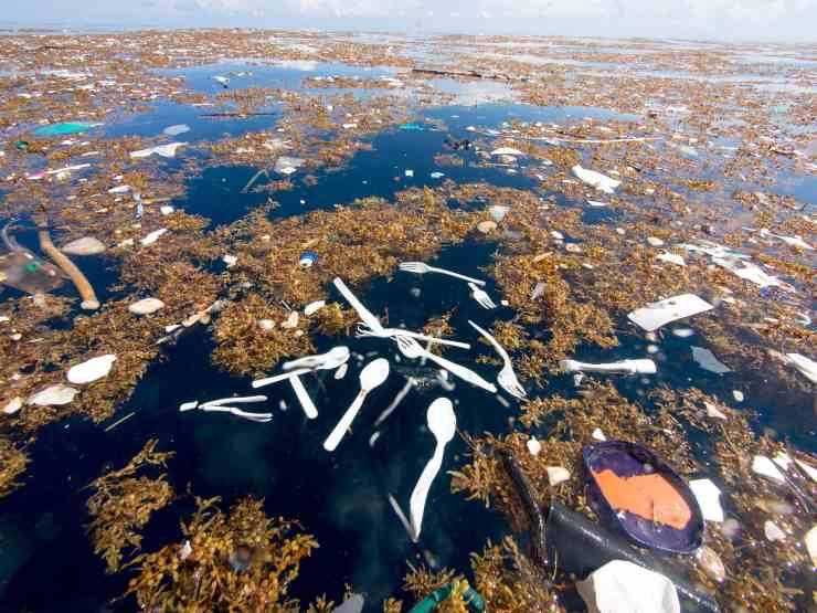 isola di plastica santo domingo