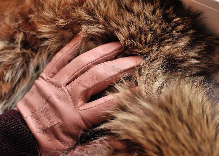 pelle pelliccia moda