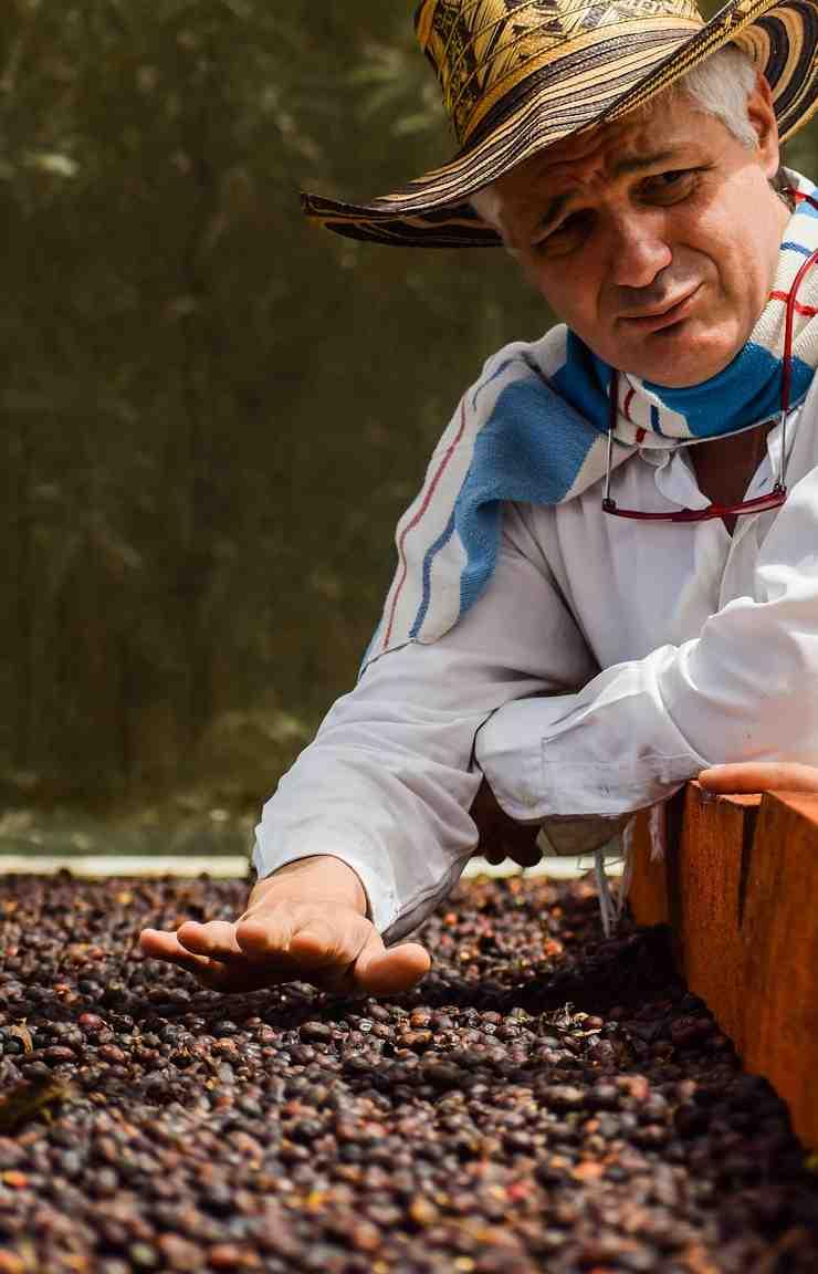 Lavoratore di caffè